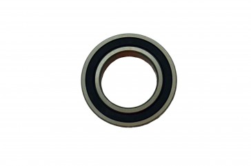 2.362 ID 6000 Series Radial Bearings