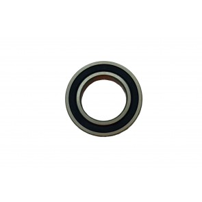 0.393 ID 6000 Series Radial Bearings